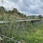 野立て太陽光発電所の雑草問題